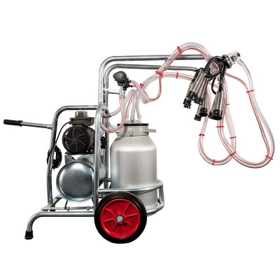 Aparat de muls vaci EMT, un bidon aluminiu 40 litri, 2 posturi - vintex - vedere butelie