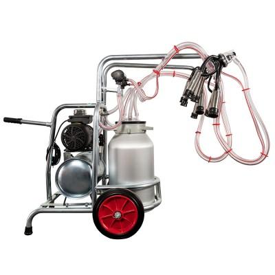 Aparat de muls vaci EMT, un bidon aluminiu 30 litri, 2 posturi - vintex - vedere butelie